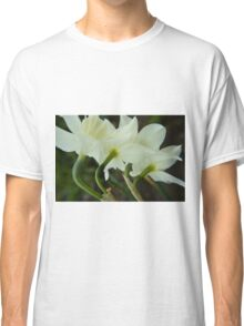 A collection of rising Daffodils Classic T-Shirt