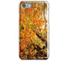 Color Along the Creekbank iPhone Case/Skin