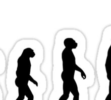 Evolution in time... Sticker
