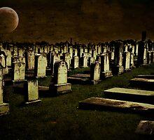 Midnight by Scott Mitchell