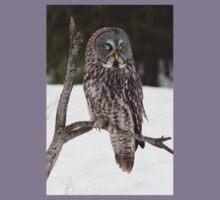 Great Grey Owl portrait Kids Tee