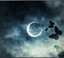 The Dark Side of the Moon by kibishipaul