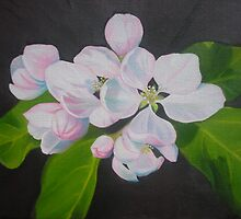 Sunny Apple Blossoms by Joob Whitman