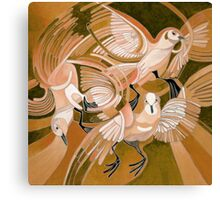Muge's Pigeons in Sepia Canvas Print