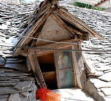 window life 2 by 305movingart
