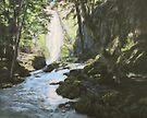 Susan Creek Falls by Karen Ilari