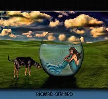 The Mermaid Trilogy by Richard  Gerhard