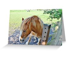 Oh My Aching Hooves Greeting Card
