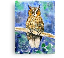 Wise Owl Canvas Print