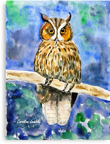 Wise Owl by CarolineLembke