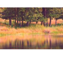 Summer Reflections Photographic Print