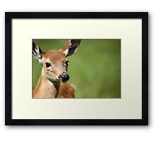 What a Face Framed Print