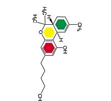 Rasta colour THC molecule design iphone case by grumble1
