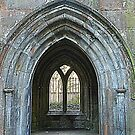Lets go through the arched window! by weecritter