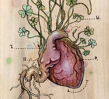 Clover Heart by Fay Helfer