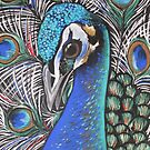 Peacock Blue by Sally Ford