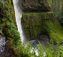 Behind the Waterfall - Mt. Hood N. F. by Mark Heller