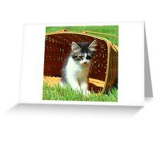 Kitten Licking Her Lips Greeting Card