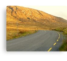 The Road Most Travelled Canvas Print