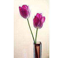 Venice Vase Spring Photographic Print