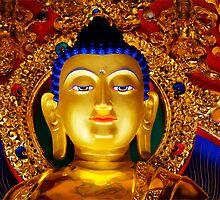Tibetan Buddha  by Bob Christopher
