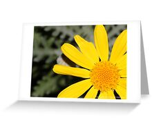 macro flora 028 Greeting Card