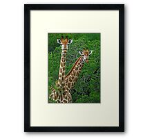 Who's who? Framed Print