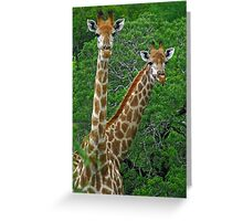 Who's who? Greeting Card