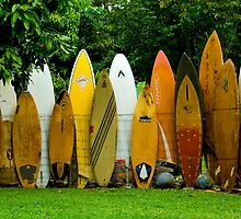 Surfboard Fence by Bob Christopher