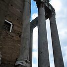 """Corinthian Columns"" by mls0606"