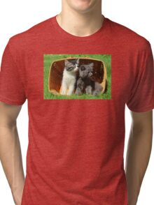 Kitten Smells Something Good Tri-blend T-Shirt