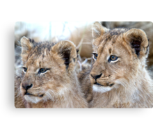 Brothers Forever Canvas Print