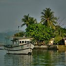 Costa Rican Living by Cheryl  Lunde