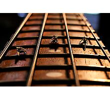 The 28 Fret Hurdles Photographic Print