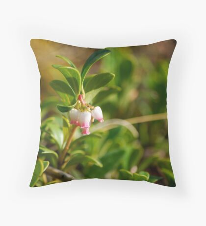 Bearberry - Wildflowers of Alberta Throw Pillow