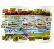 Water Lily Reflections Poster