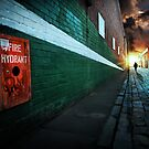 When we walk alone by Adrian Donoghue