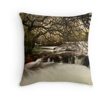 Kaituna cauldron  Throw Pillow