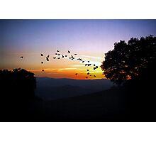 Tuscan Sunset Photographic Print
