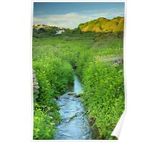 Mill Meadow Poster