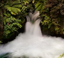 Kaituna falls by Ken Wright