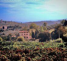 Tuscan Landscape by Karen Lewis