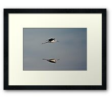 Stilt in Reflection Framed Print