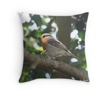 ROBIN IN HOLLY TREE Throw Pillow