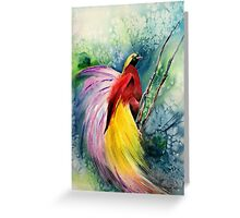 Bird of Paradise New Guinea Greeting Card