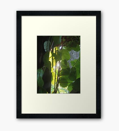 Hero Light Framed Print