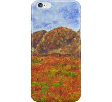 025 Landscape iPhone Case/Skin