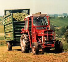 Massey Ferguson Tractor and Trailer by James Hogarth