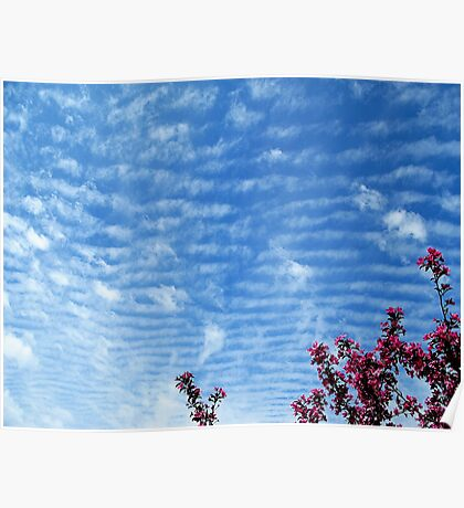 Crabapple Clouds Poster