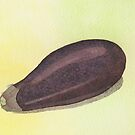 Aubergine (eggplant) by Sue Brown